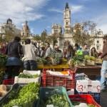 Consumo consciente:  Agricultura Ecológica más allá de los intermediarios especulativos.