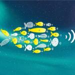Economía Humana diseña de la campaña publicitaria de Som Connexió, la telefonía consciente.