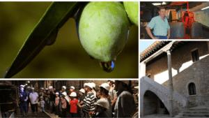 Conoce la producción artesanal de aceite de oliva virgen extra <br> Experiencia de Economia Humana @ Molino de pierdra de granito de Mequinenza