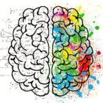 Transcendiendo mapas mentales para una toma de decisiones eficiente y coherente