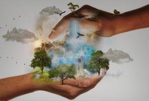 Presentación y networking de Hábitat Humano @ Evento online