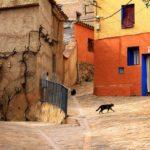 Vertebración territorial en la España despoblada